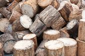 View Of Firewood Logs In A Stack