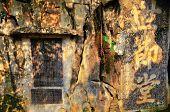 Guillin China Seven Star Park And Karst Rocks Yangshuo