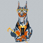 stock photo of doberman pinscher  - hipster dog Doberman Pinscher breed in glasses and a suit with a bowtie and a cane - JPG