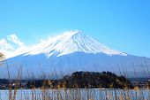 Day Light With Fujiyama