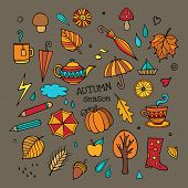 Vector set of different autumn elements