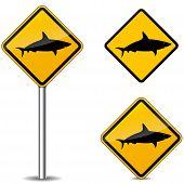 Shark Signs