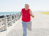 Fit mature man jogging on the pier on a sunny day