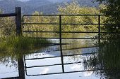 Gate Reflections in Flood Waters