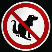 foto of dog poop  - Pooping dog sign - JPG
