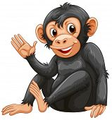Illustration of a chimpanzee on a white background