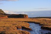 stock photo of marshes  - salt marshes by the River Otter - JPG