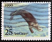 UNITED STATES OF AMERICA - CIRCA 1990: stamp printed in USA shows Sea otter circa 1990
