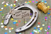 picture of year horse  - talisman horse shoe for new year 2015 - JPG