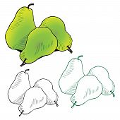 illustration of three juicy pears