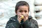 MUKTINAH, NEPAL, NOVEMBER 10, 2010 : Poverty in Nepal, a starving kid is eating an apple  in the sma