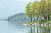 Edge Of The Reservoir. Mara Lake In Slovakia.