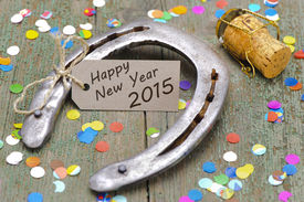image of year horse  - talisman horse shoe for new year 2015 - JPG