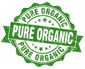 Pure Organic Green Grunge Seal Isolated On White
