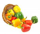 Wicker basket full of bell peppers