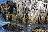 Pacific Grove Shores