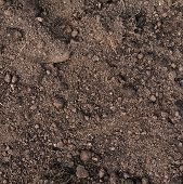 Fragment of an earth soil texture