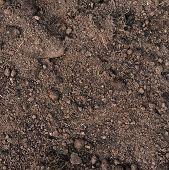 Fragment of an earth soil texture