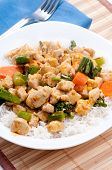 image of curry chicken  - thai red curry chicken with white rice and vegetables - JPG