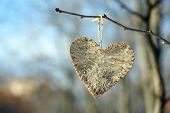 Tree branch with heart decoration on nature background