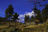 Okanagan Cabin