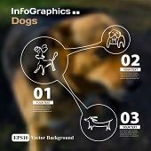 Set Of Infographics With Blurry Photographic Background On The Topic Of Dogs