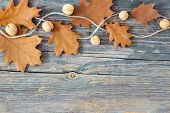 Colorful Fall Autumn Leaves On Wood Background