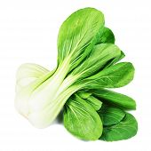 fresh green pak choi on a white background
