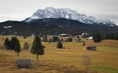 Постер, плакат: Alpine grassland with Karwendel Mountains Alps Germany