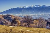 Alpine Rural Landscape