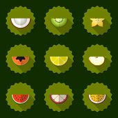 Fruit Set Vector Background, Include Apple, Coconut, Papaja