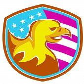 Eagle-head-side-shield-america