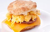 Egg And Biscuit Sandwich