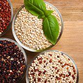 foto of quinoa  - White - JPG