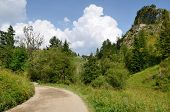 foto of pieniny  - Road in the mountains  - JPG