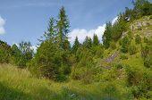 image of pieniny  - Mountains  - JPG