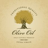 picture of olive trees  - banner with olive tree and olive oil labeled - JPG