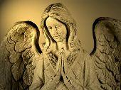 Angel In Spotlight