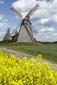 picture of windmills  - The windmill Bierde  - JPG
