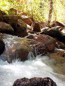 Creek Waterfall poster