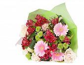 sonstige Blumen