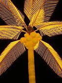 Bright Yellow Palm Tree