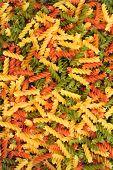 farbige pasta