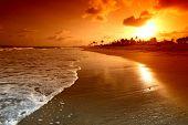 céu do amanhecer dourado
