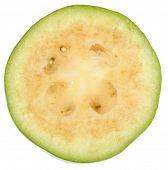 Feijoa, Pineapple Guava (Feijoa sellowiana)