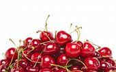 fresh cherries isolated