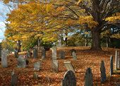 Old Cemetery In October