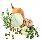 Rosemary, onion, garlic, aromatic spices for cooking meat, isolated