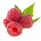 Raspberry with green leaves isolated