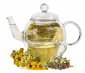 picture of tansy  - herbal tea and fresh herb isolated on white background - JPG